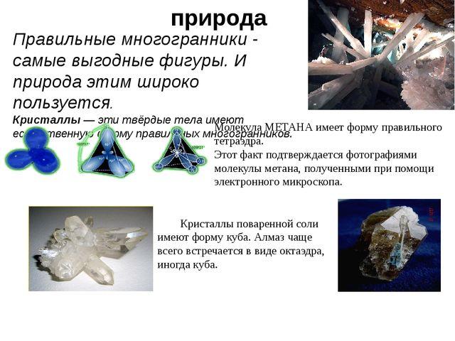 Именно икосаэдр оказался в центре внимания биологов в их спорах относительно...