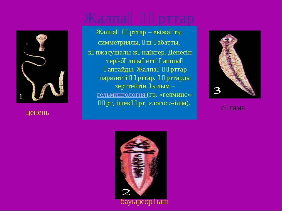 Жалпақ құрттар Жалпақ құрттар – екіжақты симметриялы, үш қабатты, көпжасушалы...