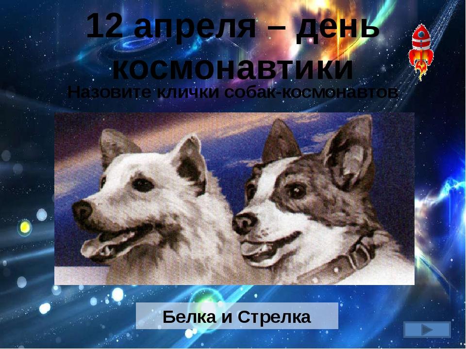 12 апреля – день космонавтики Назовите клички собак-космонавтов Белка и Стрелка