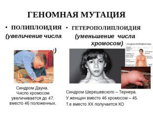 ГЕНОМНАЯ МУТАЦИЯ ПОЛИПЛОИДИЯ (увеличение числа хромосом) Синдром Дауна. Число