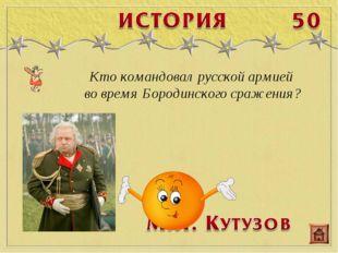 Кто командовал русской армией во время Бородинского сражения?