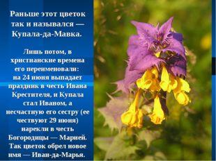 Раньше этот цветок так и назывался — Купала-да-Мавка. Лишь потом, в христианс