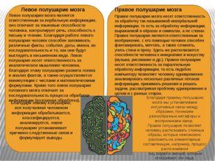 Правое полушарие мозга Правое полушарие мозга несет ответственность за обраб
