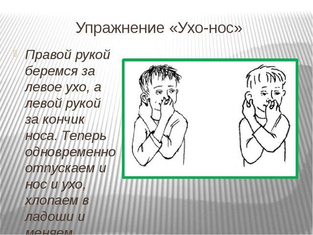 Упражнение «Ухо-нос» Правой рукой беремся за левое ухо, а левой рукой за конч...