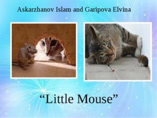"Askarzhanov Islam and Garipova Elvina ""Little Mouse"""