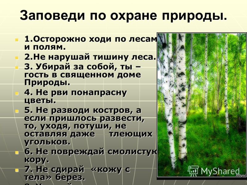 Календарь охрана природы