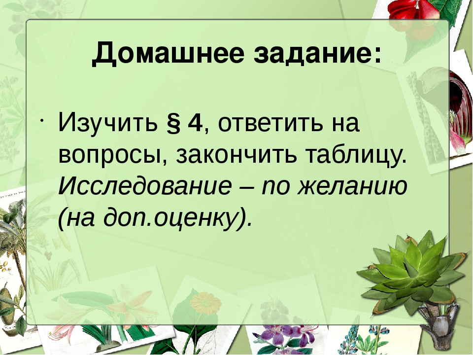 Домашнее задание: Изучить § 4, ответить на вопросы, закончить таблицу. Исслед...