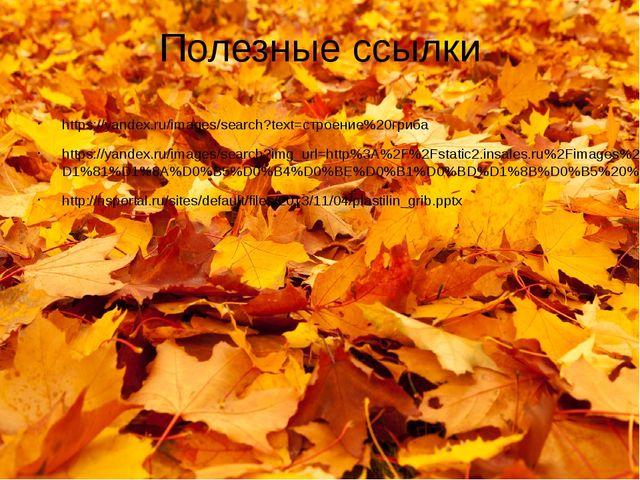 Полезные ссылки https://yandex.ru/images/search?text=строение%20гриба https:/...