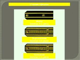 Старшие офицеры Майор Капитан 3-го ранга Подполковник Капитан 2-го ранга Полк