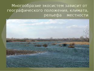 Многообразие экосистем зависит от географического положения, климата, рельефа