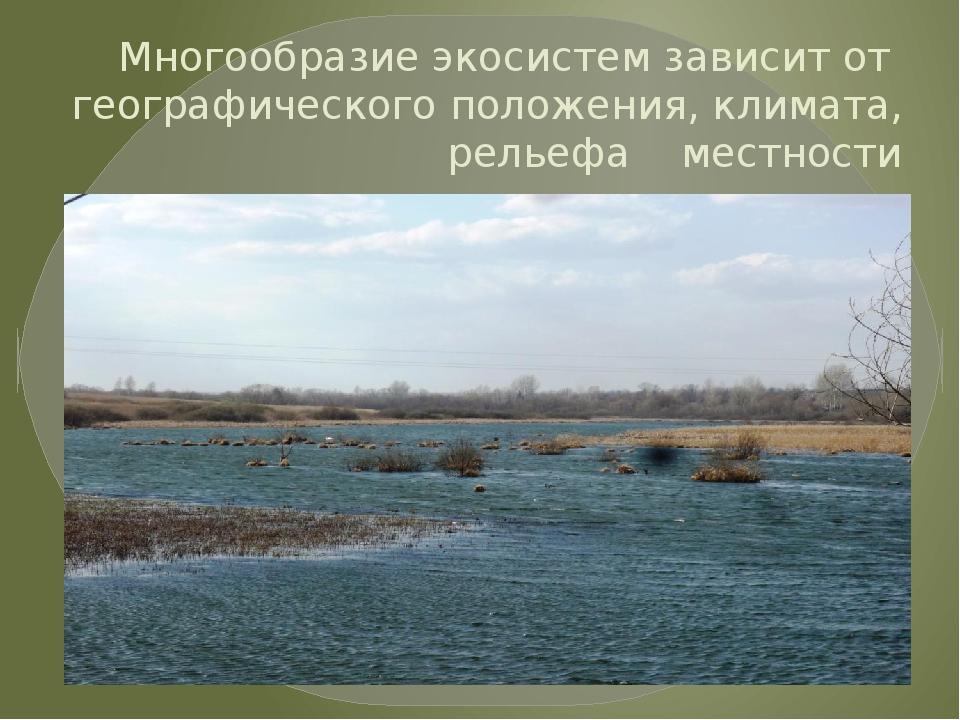 Многообразие экосистем зависит от географического положения, климата, рельефа...