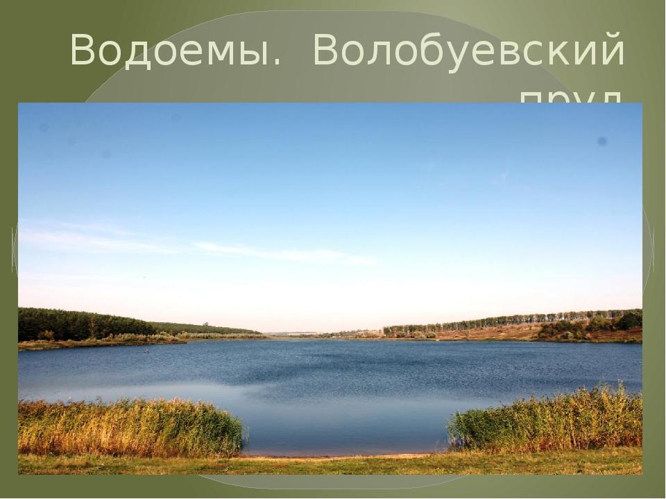 Водоемы. Волобуевский пруд