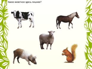 Найди среди животных хищника. лиса заяц белка панда антилопа олень