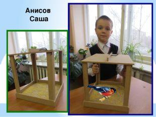 Анисов Саша