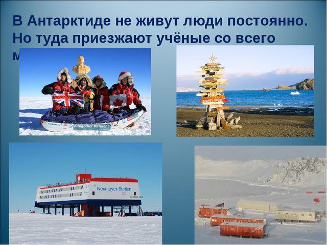 В Антарктиде не живут люди постоянно. Но туда приезжают учёные со всего мира.