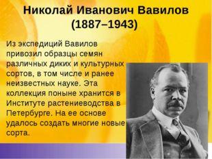 Николай Иванович Вавилов (1887–1943) Из экспедиций Вавилов привозил образцы с