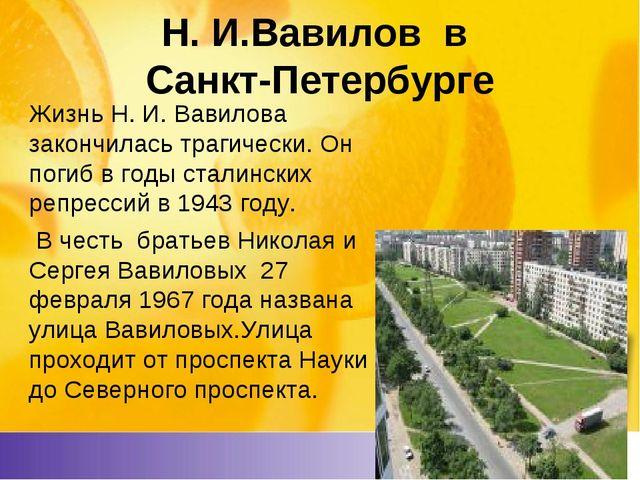Н. И.Вавилов в Санкт-Петербурге Жизнь Н. И. Вавилова закончилась трагически....