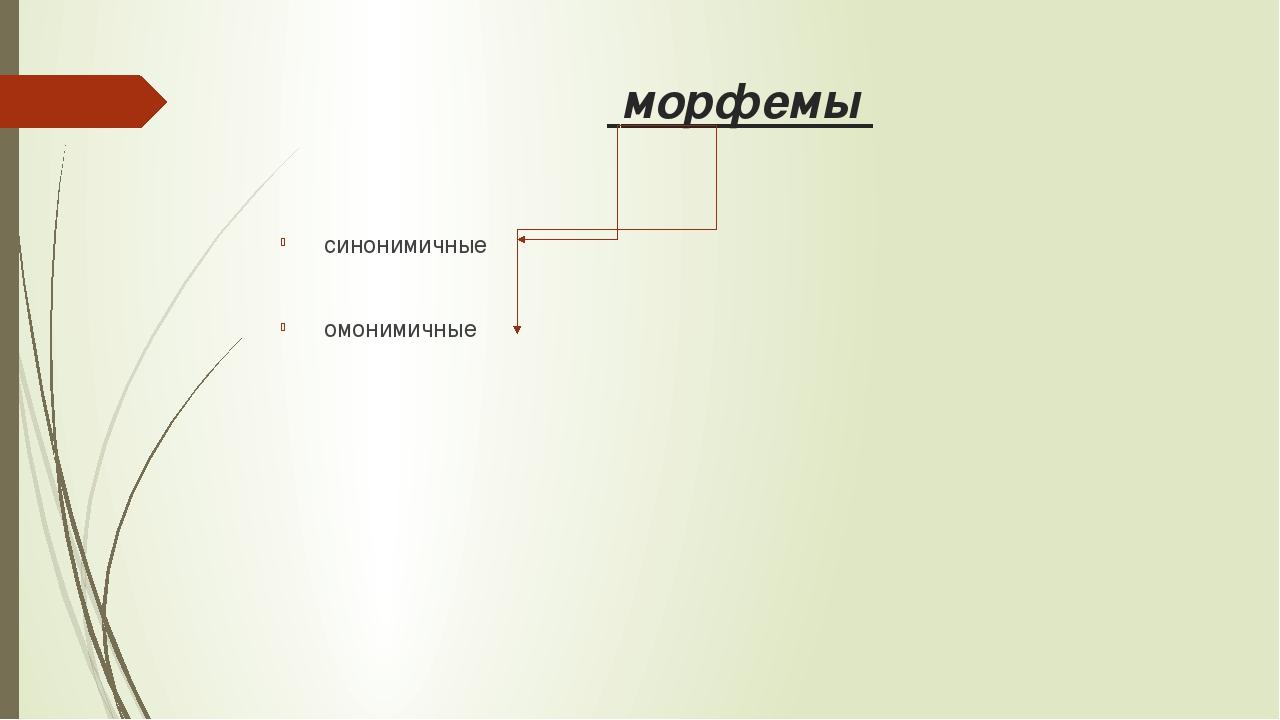 морфемы синонимичные омонимичные