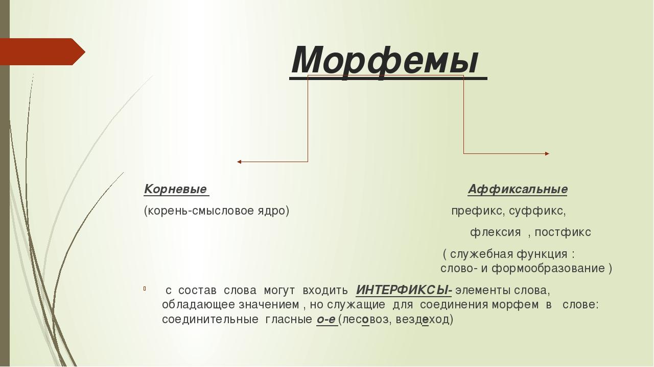 Морфемы Корневые Аффиксальные (корень-смысловое ядро) префикс, суффикс, флек...
