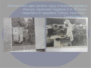 Колхоз имел две пасеки: одну в бывшей деревне Изинур, пасечник Сидоров Е.Н. В