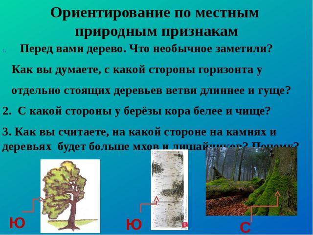 Ориентирование по местным природным признакам Перед вами дерево. Что необычно...