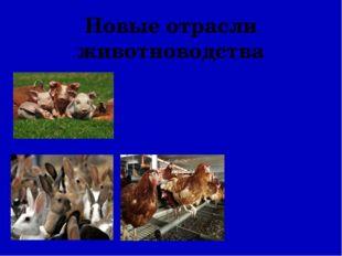 Новые отрасли животноводства