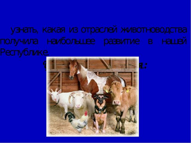 Цель исследования: узнать, какая из отраслей животноводства получила наибол...