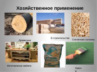 Хозяйственное применение Древесина В строительстве Спичечная соломка Изготовл