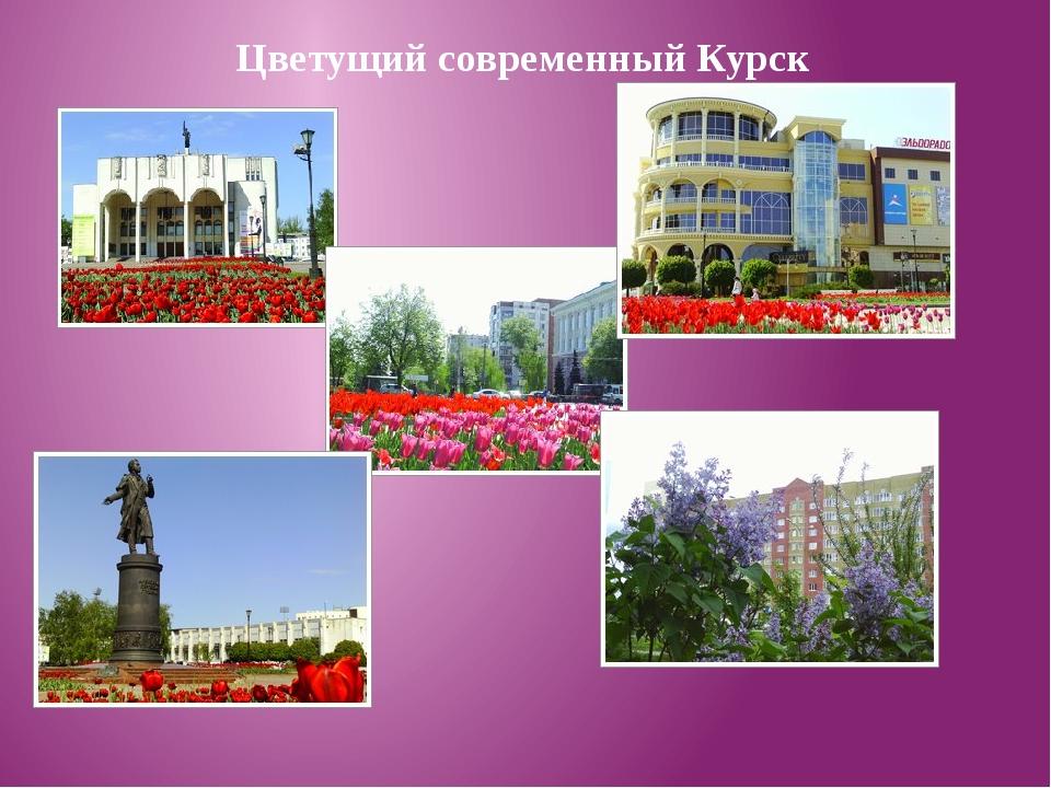 Цветущий современный Курск