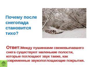 Почему после снегопада становится тихо? Ответ:Между пушинками свежевыпавшего