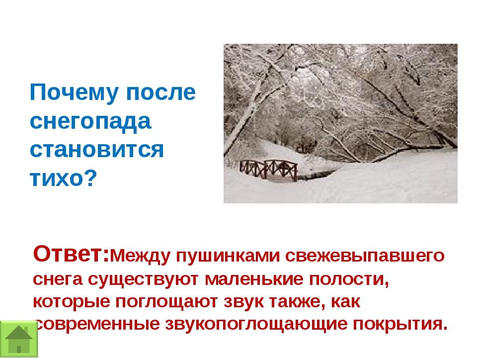 Почему после снегопада становится тихо? Ответ:Между пушинками свежевыпавшего...