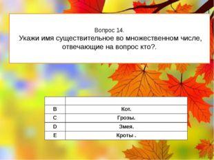 Вопрос 14. Укажи имя существительное во множественном числе, отвечающие на во