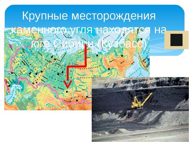 Крупные месторождения каменного угля находятся на юге Сибири (Кузбасс)