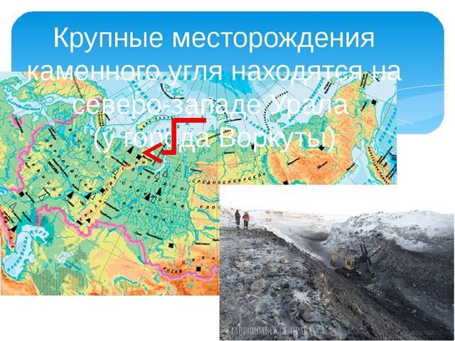 Крупные месторождения каменного угля находятся на северо-западе Урала (у гор...