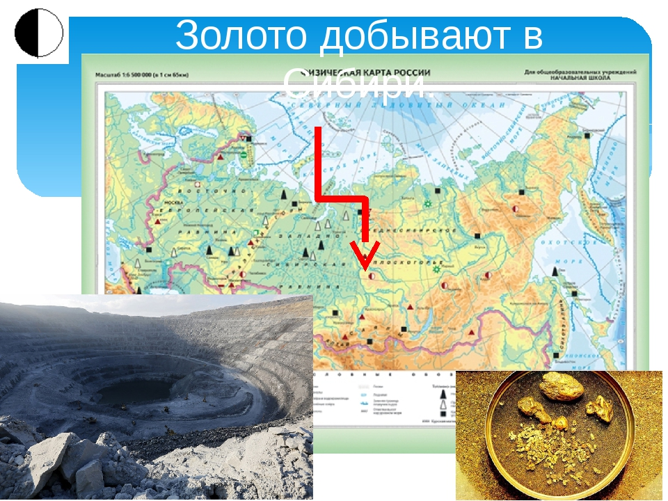 Золото добывают в Сибири.