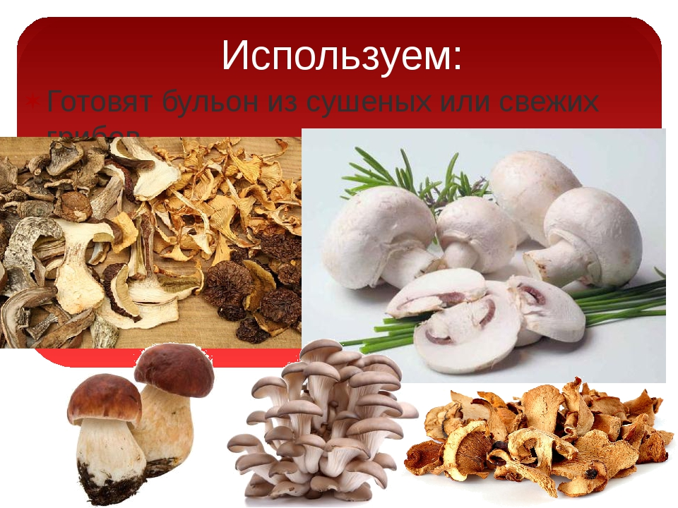 Используем: Готовят бульон из сушеных или свежих грибов