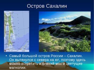 Остров Сахалин Самый большой остров России – Сахалин. Он вытянулся с севера н