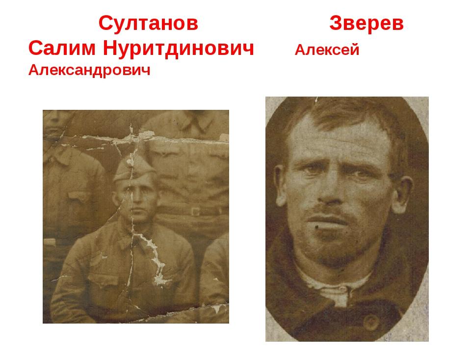 Султанов Зверев Салим Нуритдинович Алексей Александрович