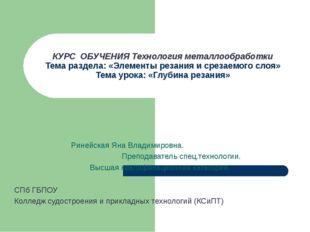 Ринейская Яна Владимировна. Преподаватель спец.технологии. Высшая квалификаци