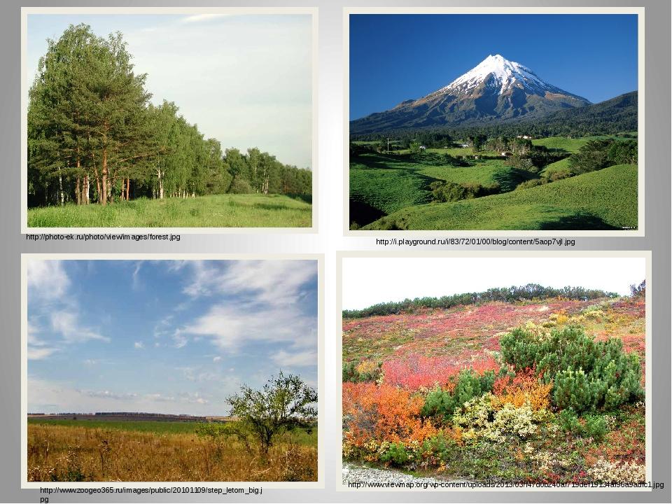 http://photo-ek.ru/photo/view/images/forest.jpg http://i.playground.ru/i/83/7...