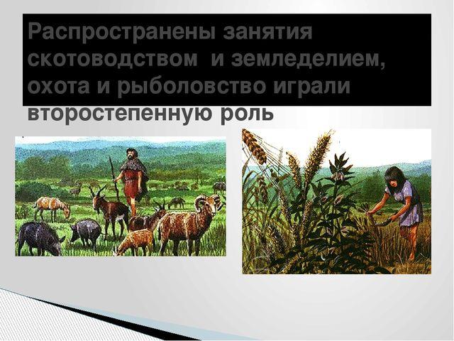 Распространены занятия скотоводством и земледелием, охота и рыболовство играл...