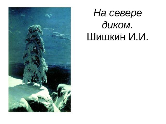 На севере диком. Шишкин И.И.