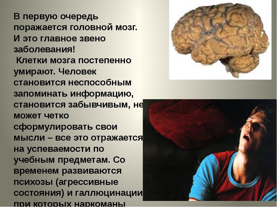 В первую очередь поражается головной мозг. И это главное звено заболевания! К...