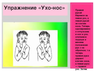 Упражнение «Ухо-нос» Правой рукой беремся за левое ухо, а левой рукой за конч