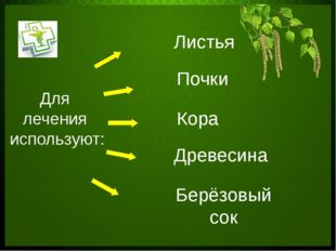 Для лечения используют: Листья Почки Кора Древесина Берёзовый сок