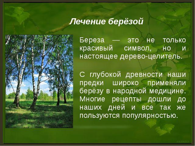 Береза — это не только красивый символ, но и настоящее дерево-целитель. С глу...