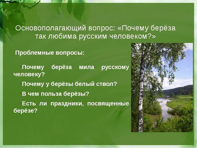 Основополагающий вопрос: «Почему берёза так любима русским человеком?» Пробле...