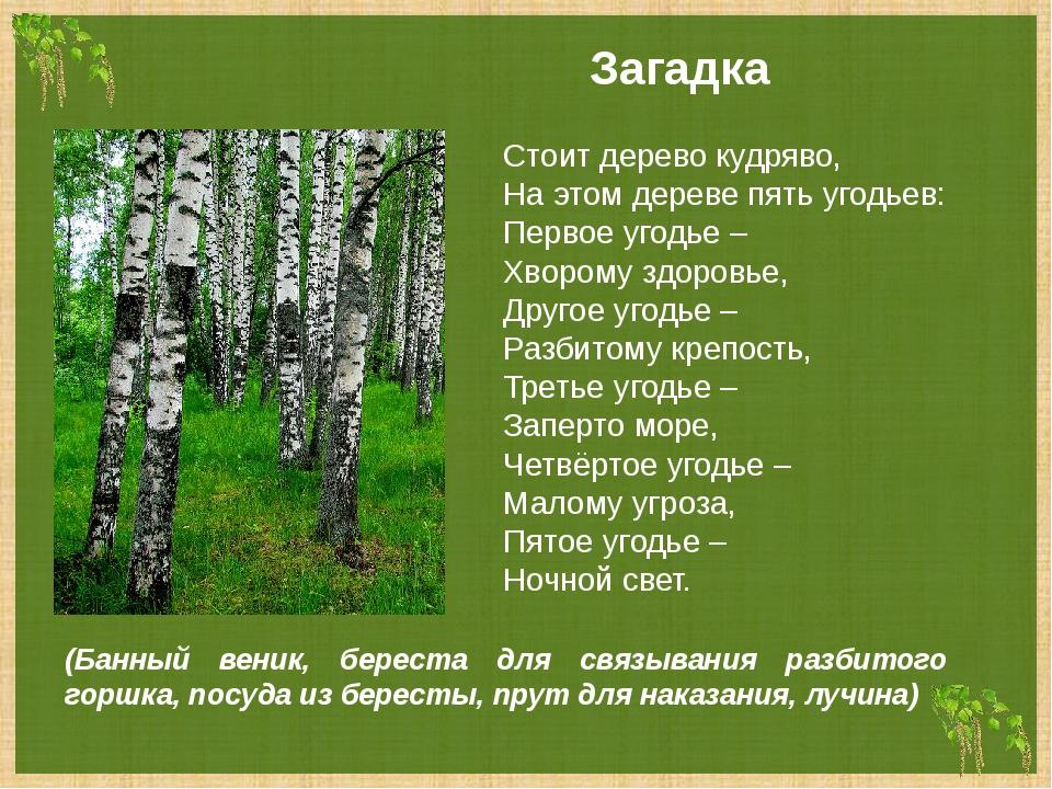 Загадка Стоит дерево кудряво, На этом дереве пять угодьев: Первое угодье – Хв...