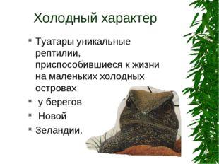 Холодный характер Туатары уникальные рептилии, приспособившиеся к жизни на ма