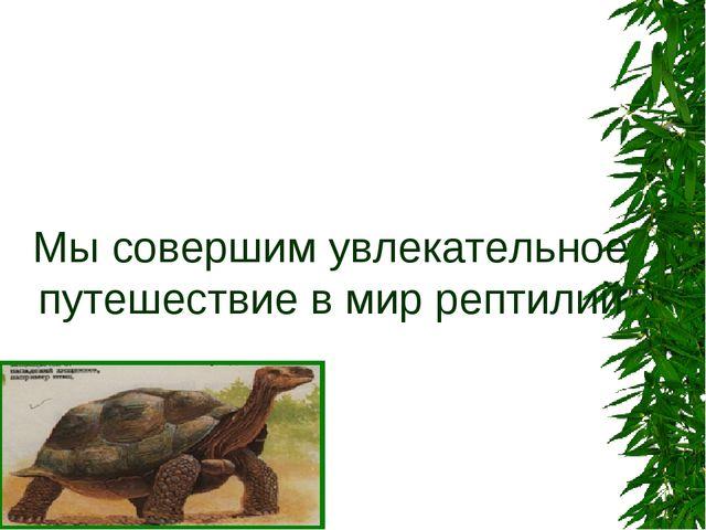 Мы совершим увлекательное путешествие в мир рептилий